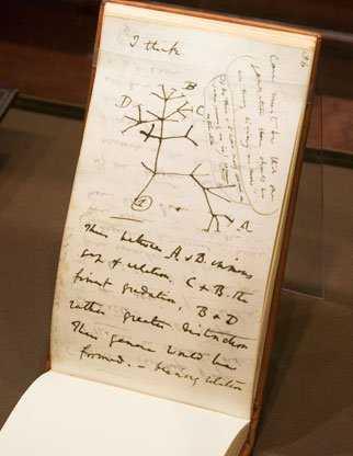 Sổ tay ghi chép của Drawin