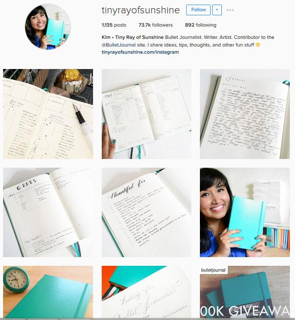 Lấy Cảm Hứng Ghi Chép Bullet Journal Từ Những Tài Khoản Instagram Này 4